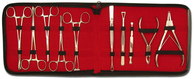 iTC Tattoo et Piercing - Kit de 10 pinces de piercing